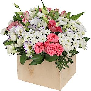 Заказ букеты салон цветов черная роза цветы купить